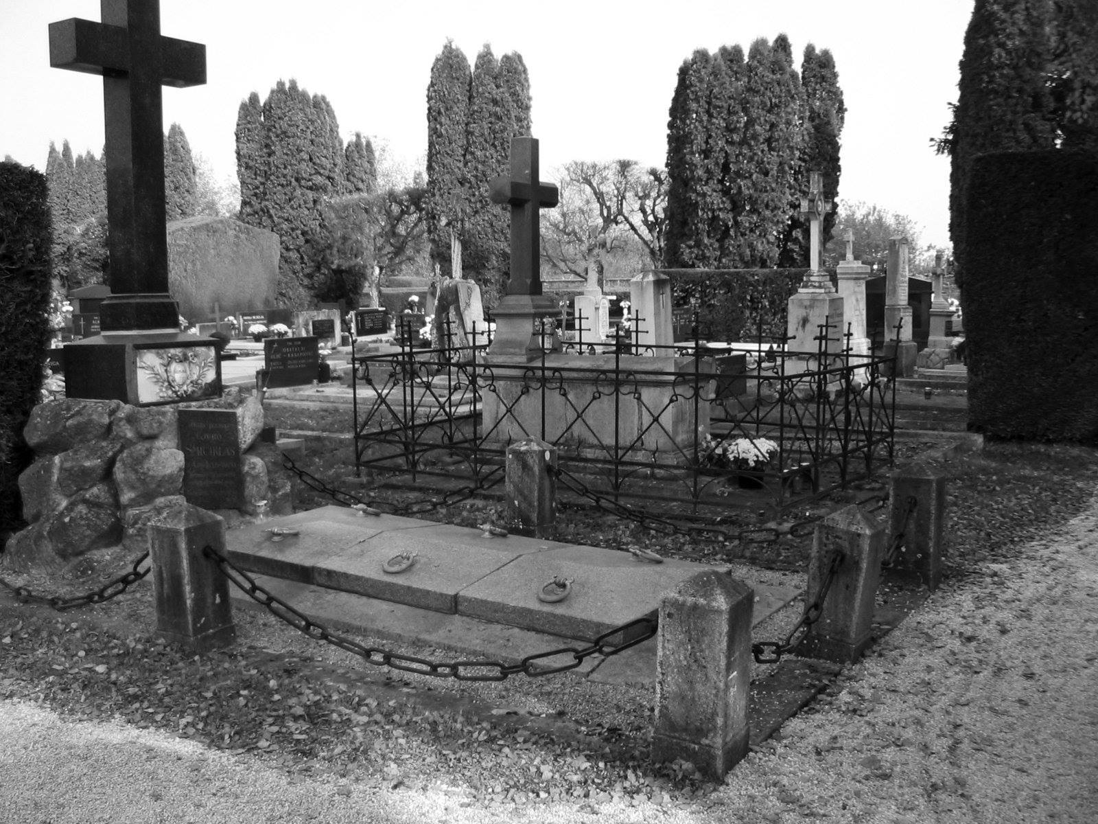 black and white image of a cemetery with raised tombs