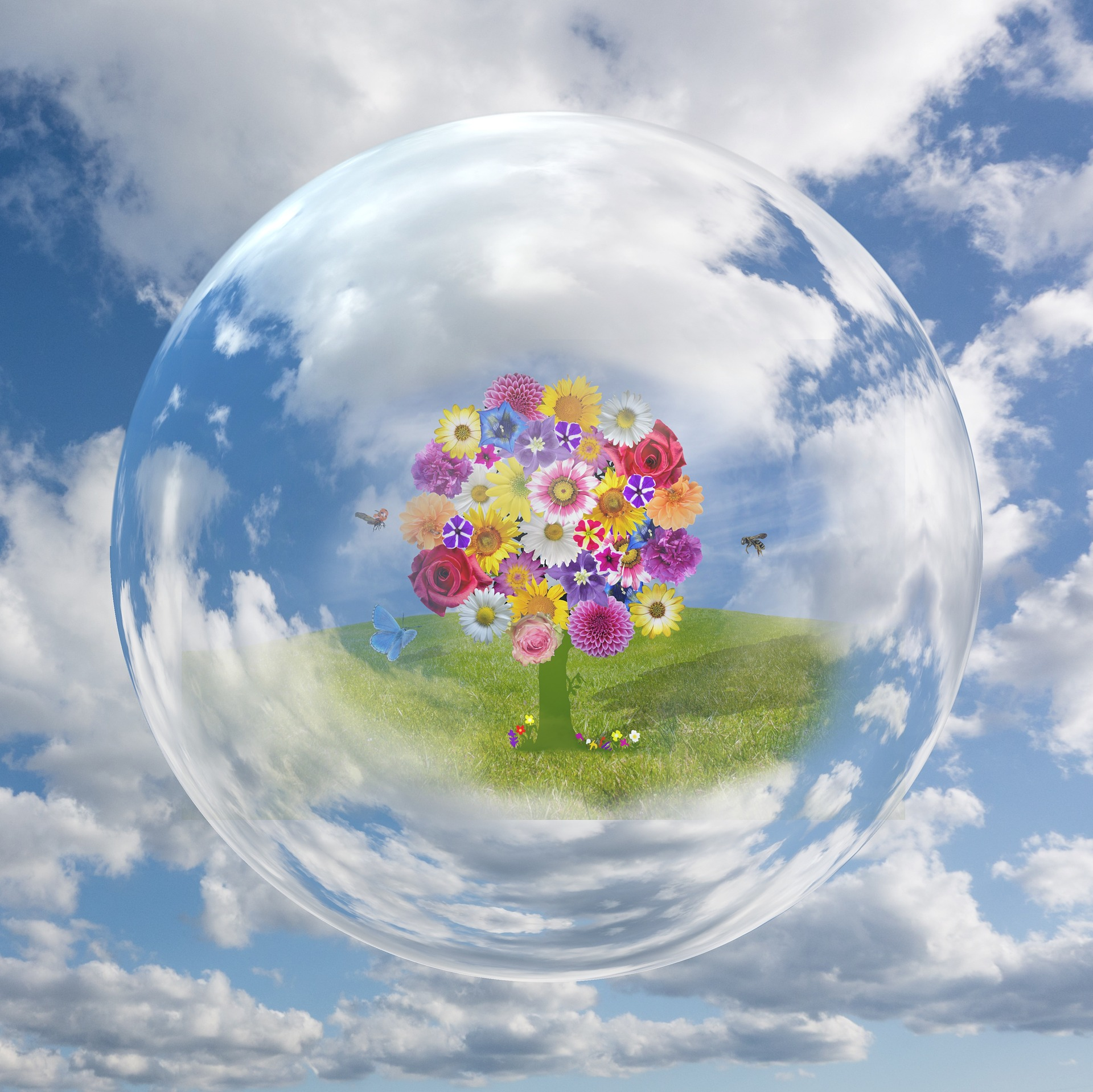 A tree made of flowers sits in a field of grass surrounded by butterflies, and encased in a bubble that floats in a partly-cloudy sky